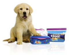 kleenex puppy Promotional Plush Puppies
